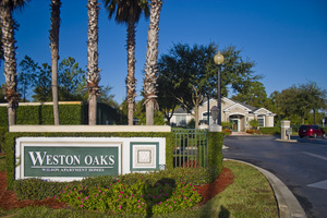 Weston Oaks | Holiday, Florida, 34691  Garden Style, MyNewPlace.com