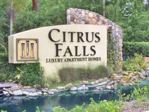Citrus Falls Luxury Apartments | Tampa, Florida, 33625   MyNewPlace.com