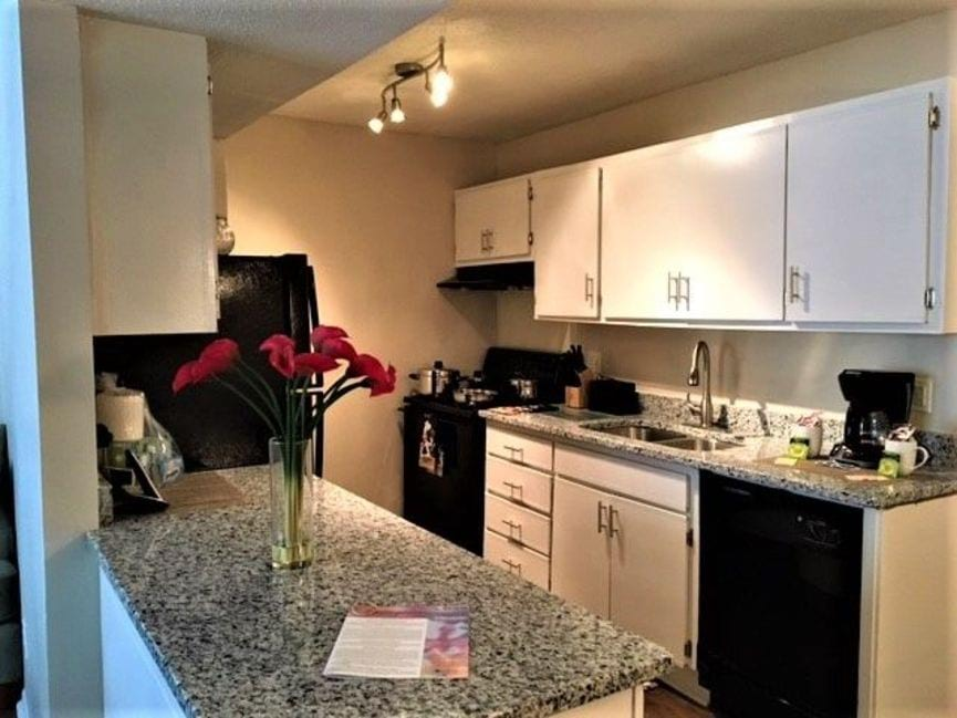 Apartments For Rent In Columbia Sc Spring Tree Apartments Home