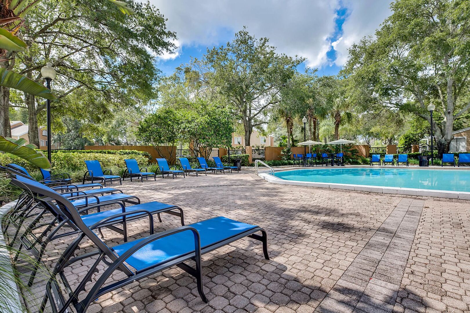 Apartments for Rent in Tampa, FL | Place At Carrollwood - Home