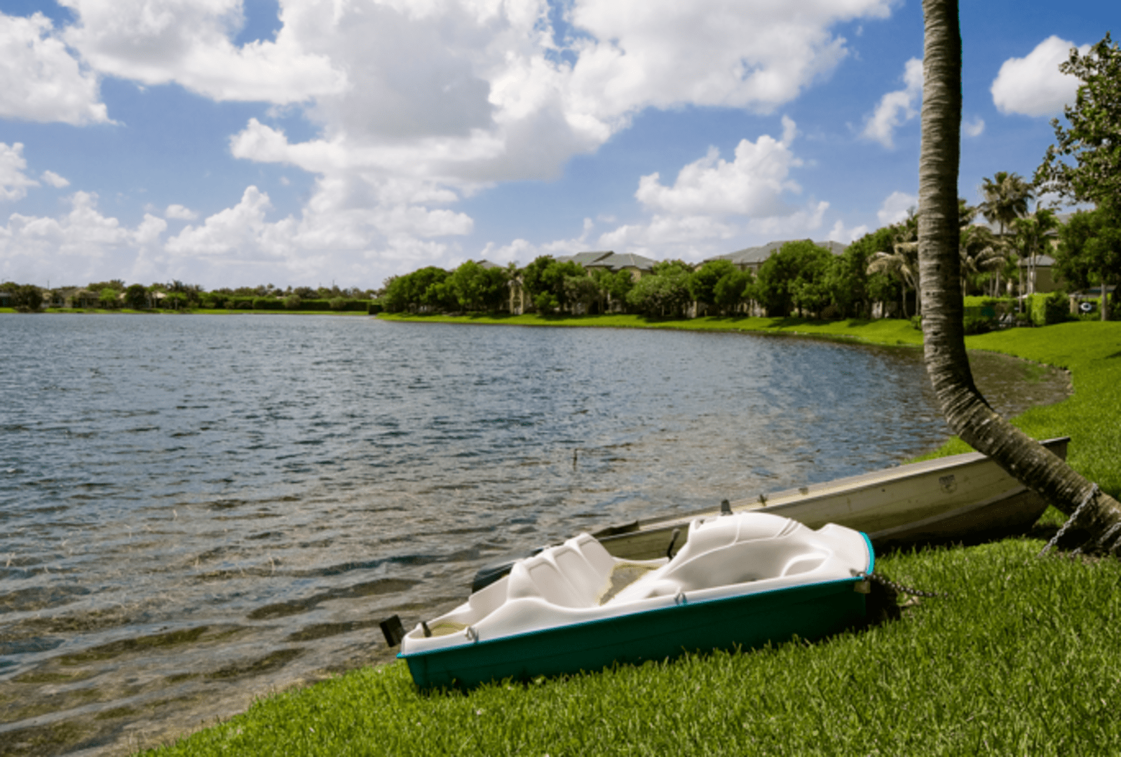 Apartments For Rent In Coral Springs Fl Club Lake