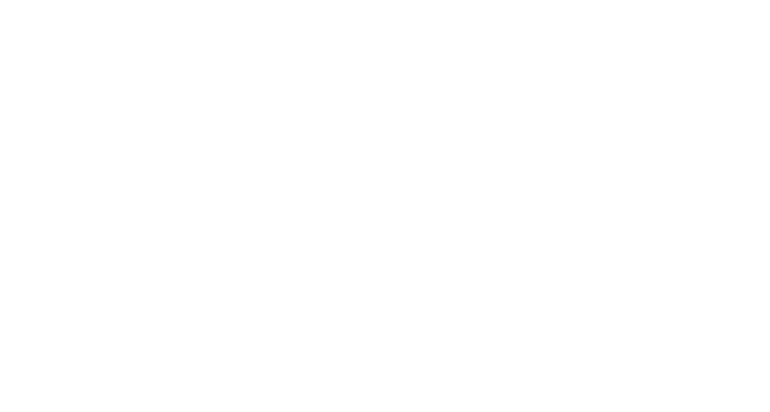 District Vue  Logo