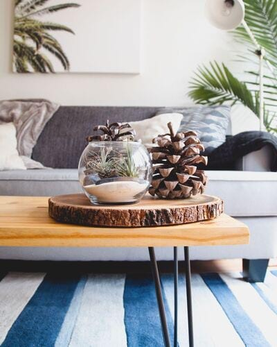 Stock image of coffee table with wooden center piece adorned with pine cones and grey couch in background.