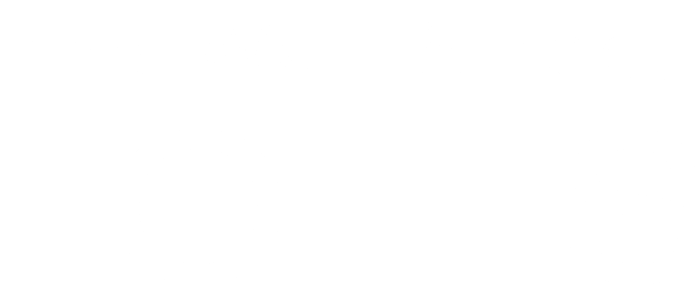 Wall Street Lofts Logo