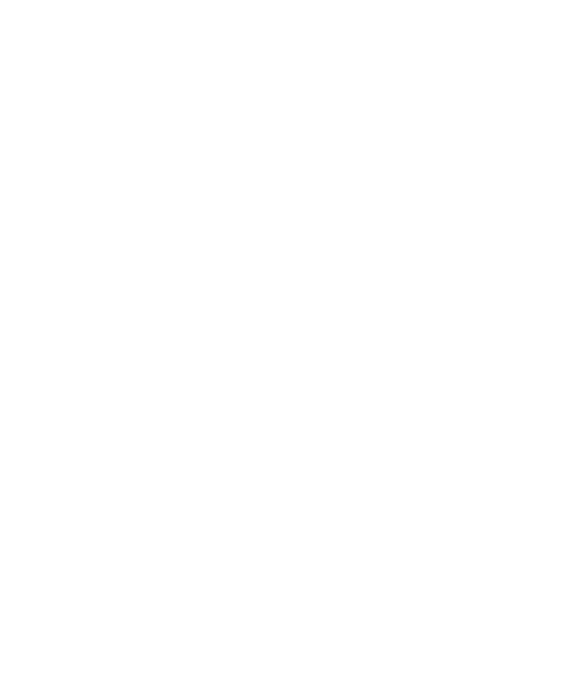 Ashton Austin Logo