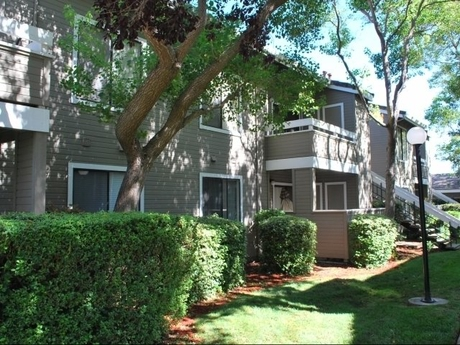 Apartment for Rent in Morgan Hill
